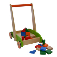 Baby Walker with 20 Blocks