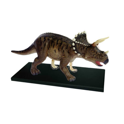 4D Vision Triceratops